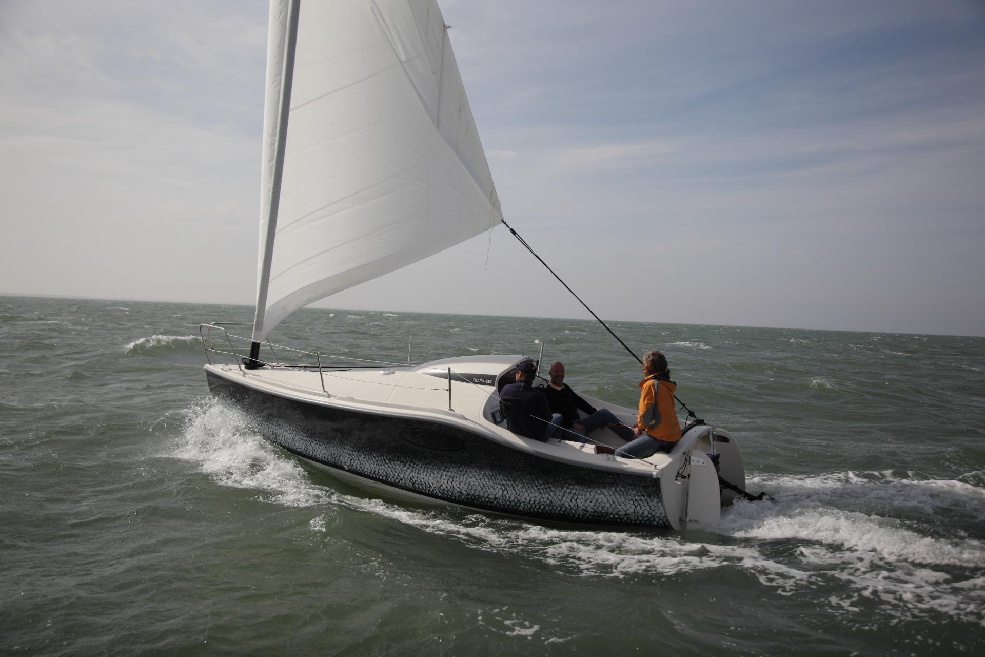Sailboat Ocqueteau Tilapia Easy Catboat Our Range